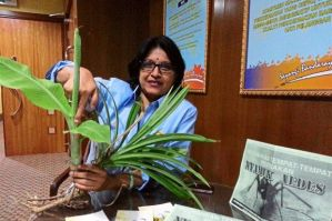Look deeper: Dr Chitra explaining how water collected in-between plants such as banana trees and pandan can be breeding spots for the mosquitoes. (The Star)