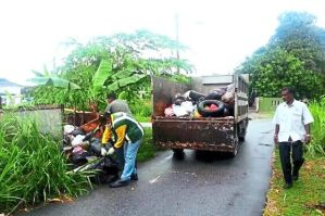 Cleaning up a dirty habit: MPK workers clearing up garbage dumped along roads in Klang. –  The Star filepic