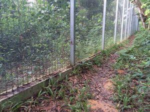 Kawasan rekreasi Bukit Kiara kini dirampas pemaju hartanah dan pagar dilihat mengelilingi seluruh taman itu. – Gambar ihsan Friends of Bukit Kiara. - See more at: http://www.themalaysianinsider.com/bahasa/article/bukit-kiara-kawasan-hijau-terakhir-di-kl-diancam-kemusnahan#sthash.FUcMseMZ.dpuf